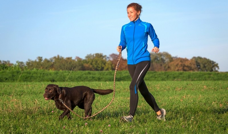 Image result for running with dog