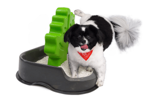 With The Woofaloo, You Won't Mind If Your Dog Pees Inside