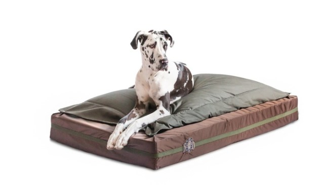 If You Have An Extra-Large Breed You Need A Big Ass Dog Bed From BAD