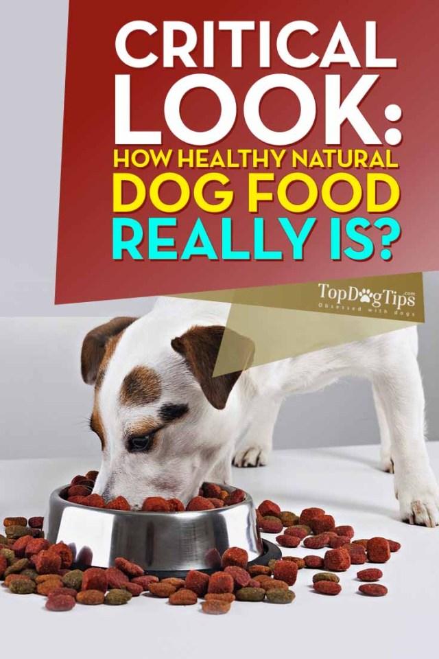 Is natural dog food healthy