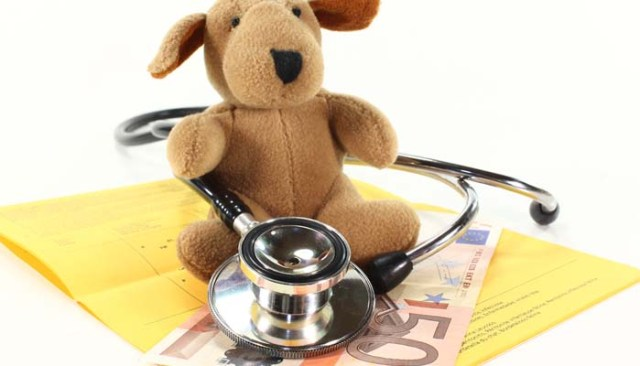 Providers of Best Pet Insurance Plans for Dogs