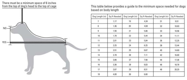 Small dog crate measurements