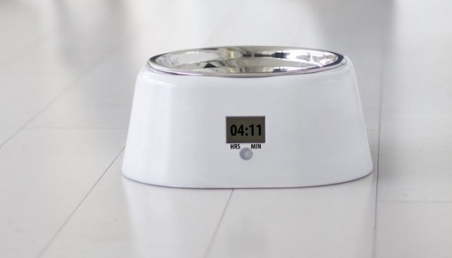 The JustFed Pet Bowl Keeps Fido's Feeding Schedule Consistent