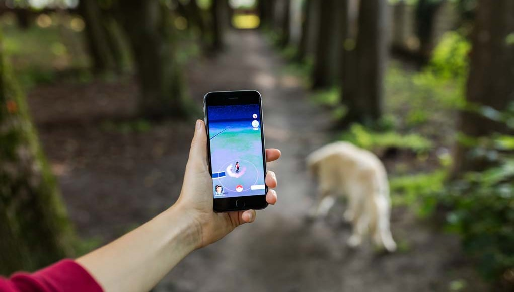 How to Play Pokemon Go with Dogs