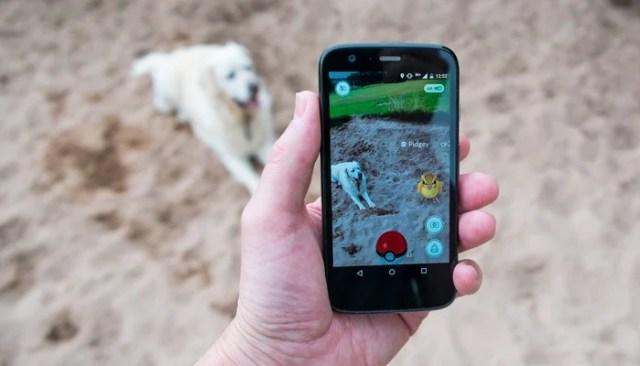 Pokemon Go For Dogs