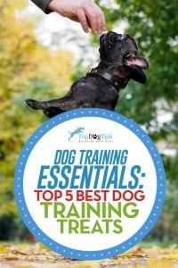 Top Best Dog Training Treats