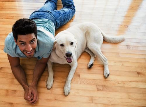 Linoleum Floor for Dogs