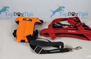 Best Seat Belt for Dogs Comparison