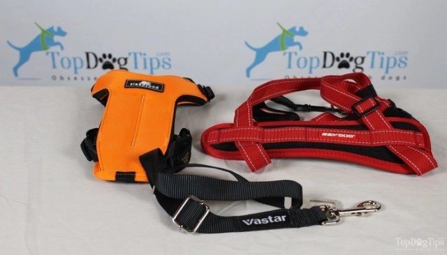 Comparing Best Seat Belt for Dogs