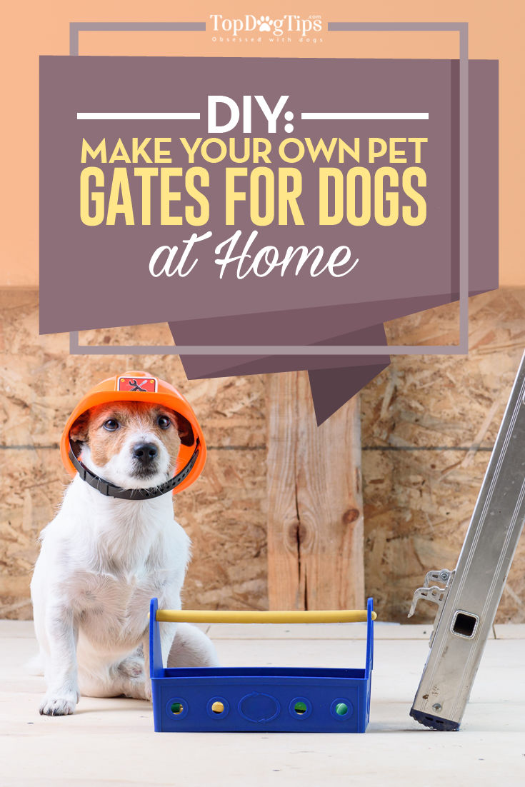 Diy Pet Gates Project How To Make A Dog Gate At Home Top Dog Tips