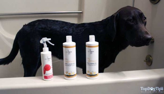 Isle of Dogs Grooming Products for Dogs Review