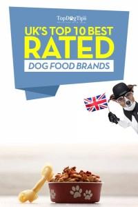 Top Best Dog Food UK Brands