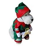 Elf Holiday Dog Costume