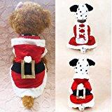 Santa Dog Hoodie
