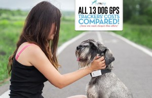 Dog GPS Trackers Costs Compare