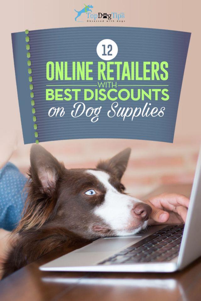 Top Online Dog Supplies Retailers