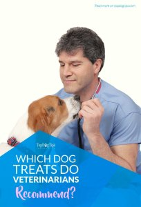 Which Dog Treats Do Veterinarians Recommend and Why