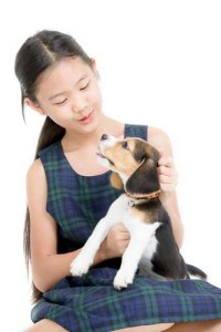 A small girl is playing with a puppy