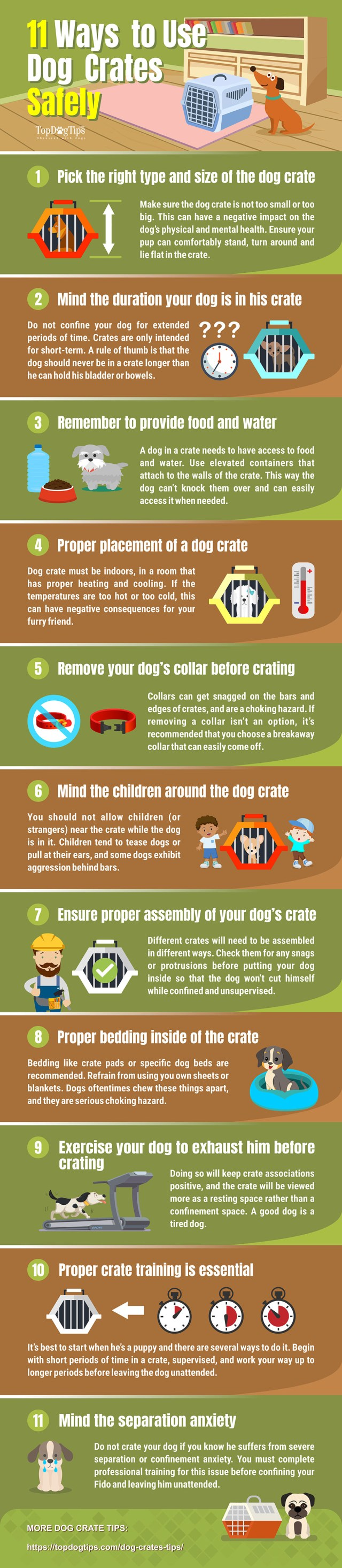 Dog Crate Safety Tips [Infographic]