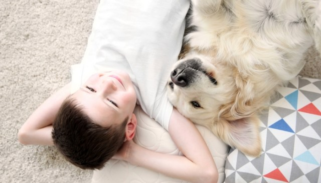 Essential Safety Tips for Bringing a Dog into a Family with Kids