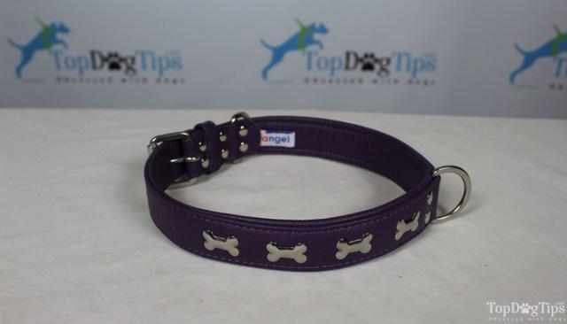 Angel Pet Products Rotterdam Bones Collar Review