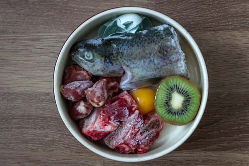 The Renal Diet for Dogs Guide