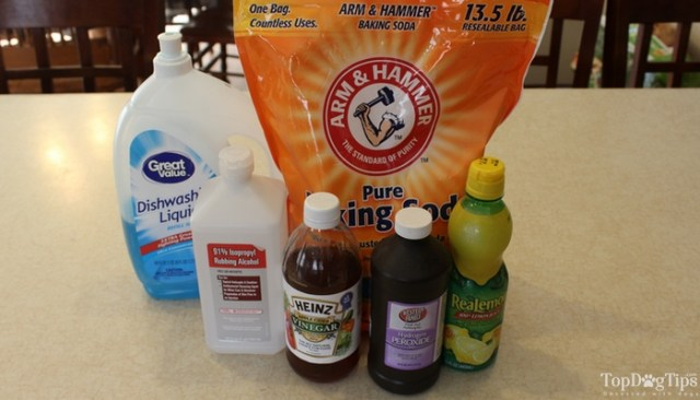 How To Make Homemade Cleaners That Are Safe for Dogs