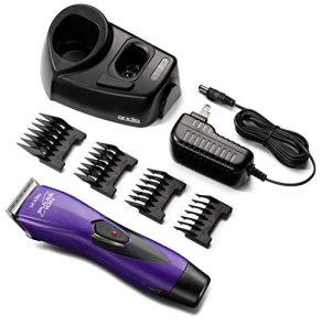Andis Pulse Ion Clipper Review