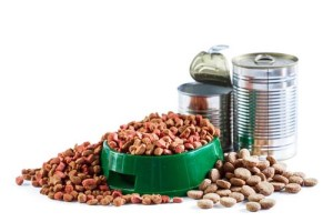 Dehydrated dog food vs dry kibble vs canned