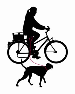 How to pick the best dog bike leash for cycling