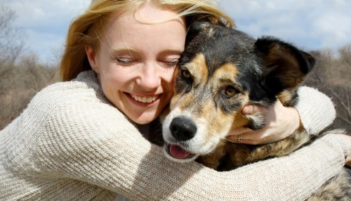 Tips for a Smooth Transition with a Rescue Dog