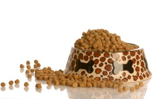 Understanding Dog Food Do You Know What's In Your Dog's Kibble
