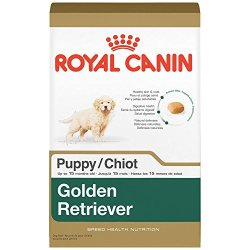 Royal Canin Golden Retriever Breed Health Nutrition Puppy