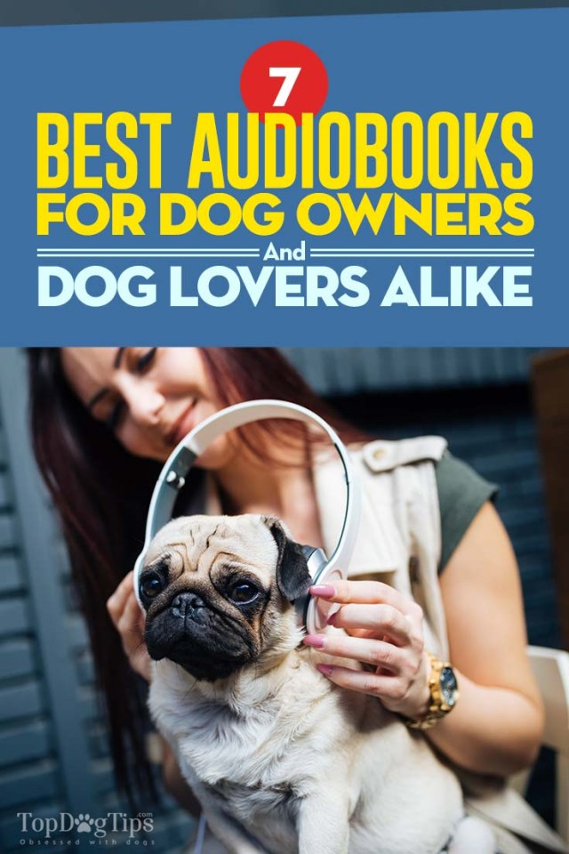 The Best Audiobooks for Dog Owners and Dog Lovers