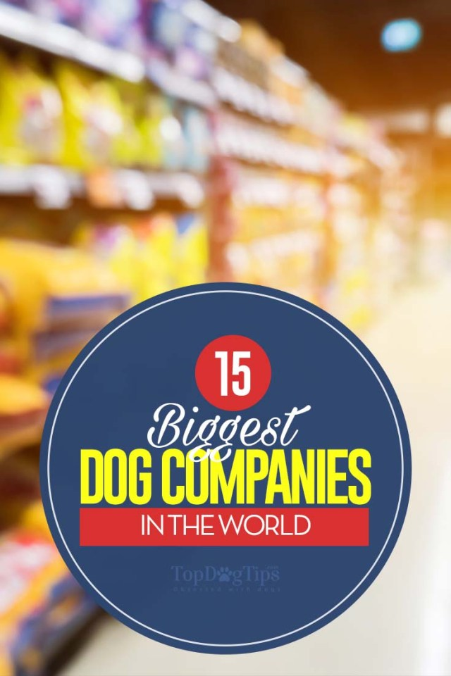 15 Famous Dog Companies in the World