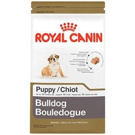 Royal Canin English Bulldog Breed Health Nutrition Puppy