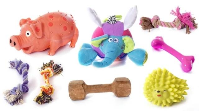 Top Dog Toy Companies
