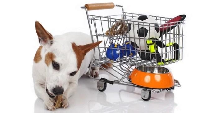 Top Dog Supplies Companies