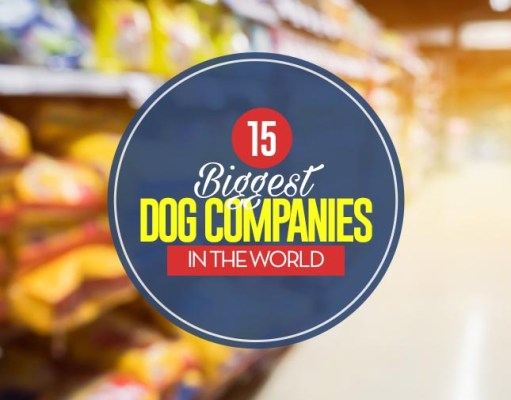 Top 15 Biggest Dog Companies in the World and Their Most Popular Brands