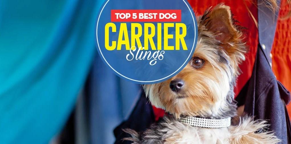 Top 5 Best Dog Carrier Slings