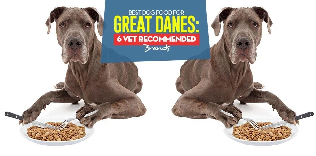 Top Best Dog Foods for Great Danes