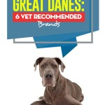 Best Dog Food For Great Danes Of 2020 Top 6 Vet Recommended Brands