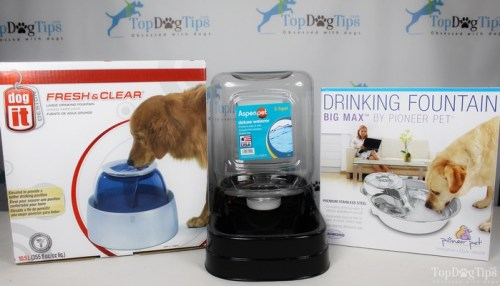 Testing the best dog water fountain choices