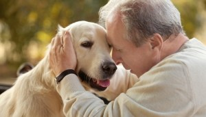 Science on therapy dogs for depression
