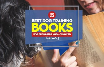 Top 25 Best Dog Training Books for Beginners and Advanced Trainers