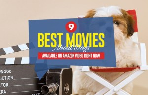 Top 9 Best Movies About Dogs Available on Amazon Video Right Now