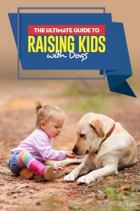 Your Ultimate Guide for Raising Kids with Dogs
