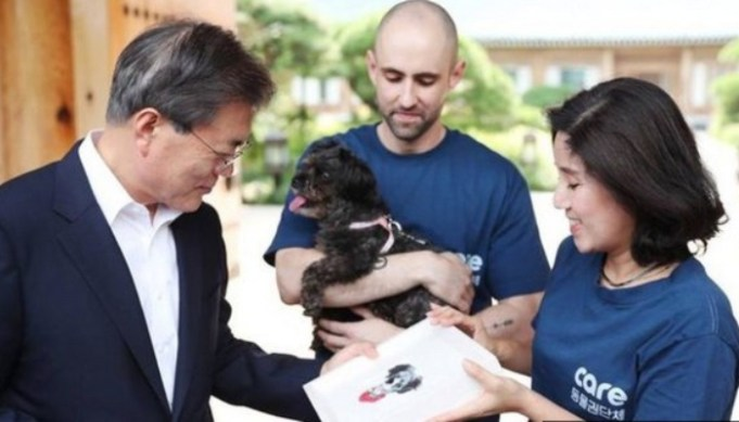 President of South Korea Rescues Meat Farm Dog