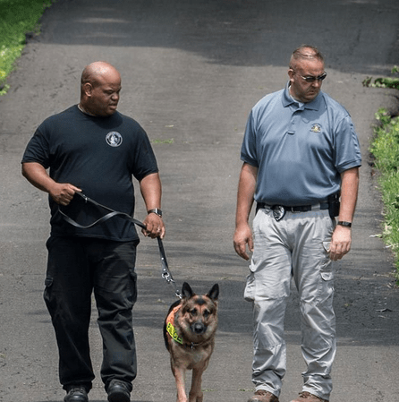 Bodies of 4 Young Men Finally Found, Thanks to Cadaver Dogs