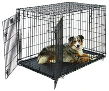 MidWest Life Stages Folding Metal Crate
